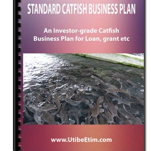Catfish Business Plan With 3 Years Financial Analysis